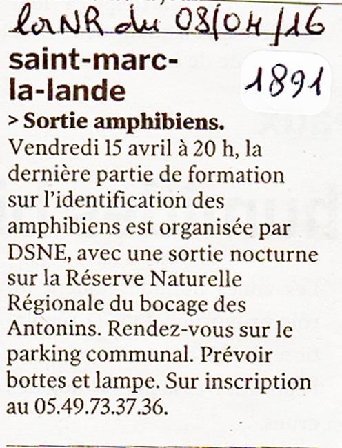 638-21891-NR-08-04-16-sortie-amphibiens