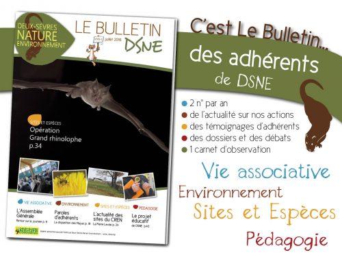 images-bulletin-dsne