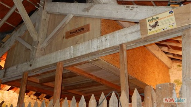 Rochard, un gîte aussi pour les Chauves-souris ! Retour sur le chantier participatif du 4 et 5 juin !